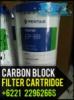 Pentek EP 10 BB Pentair Carbon Block Filter Cartridge Indonesia  medium